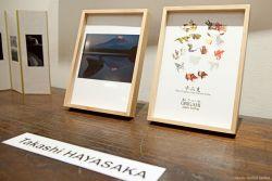Takashi-Hayasaka-WebIMG8077